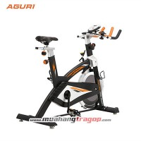 Xe đạp tập AGURI AGS-202N