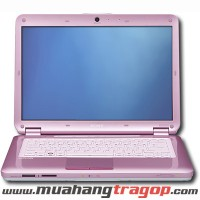 Laptop Sony VAIO VGN – P530