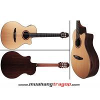 Đàn Guitar Yamaha NTX1200R