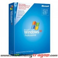 Windows XP Pro Chinese Traditional SP2 OEM CD