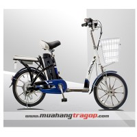 Xe đạp điiện AIMA ED210E