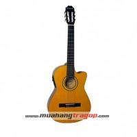 Đàn guitar Suzuki SCG 6CE