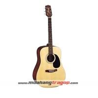 Đàn guitar Suzuki SDG 6PKNL