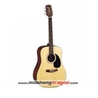 Đàn guitar Suzuki SDG 15NL