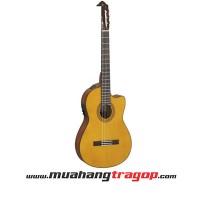 Đàn guitar yamaha CGX122MSC